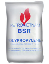 8-PP-INJ-I3110-PETROVIETNAM